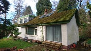 mossy roof and yard before